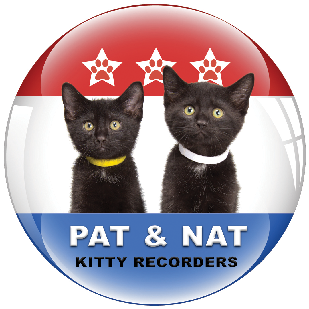 PAT AND NAT KITTY RECORDERS