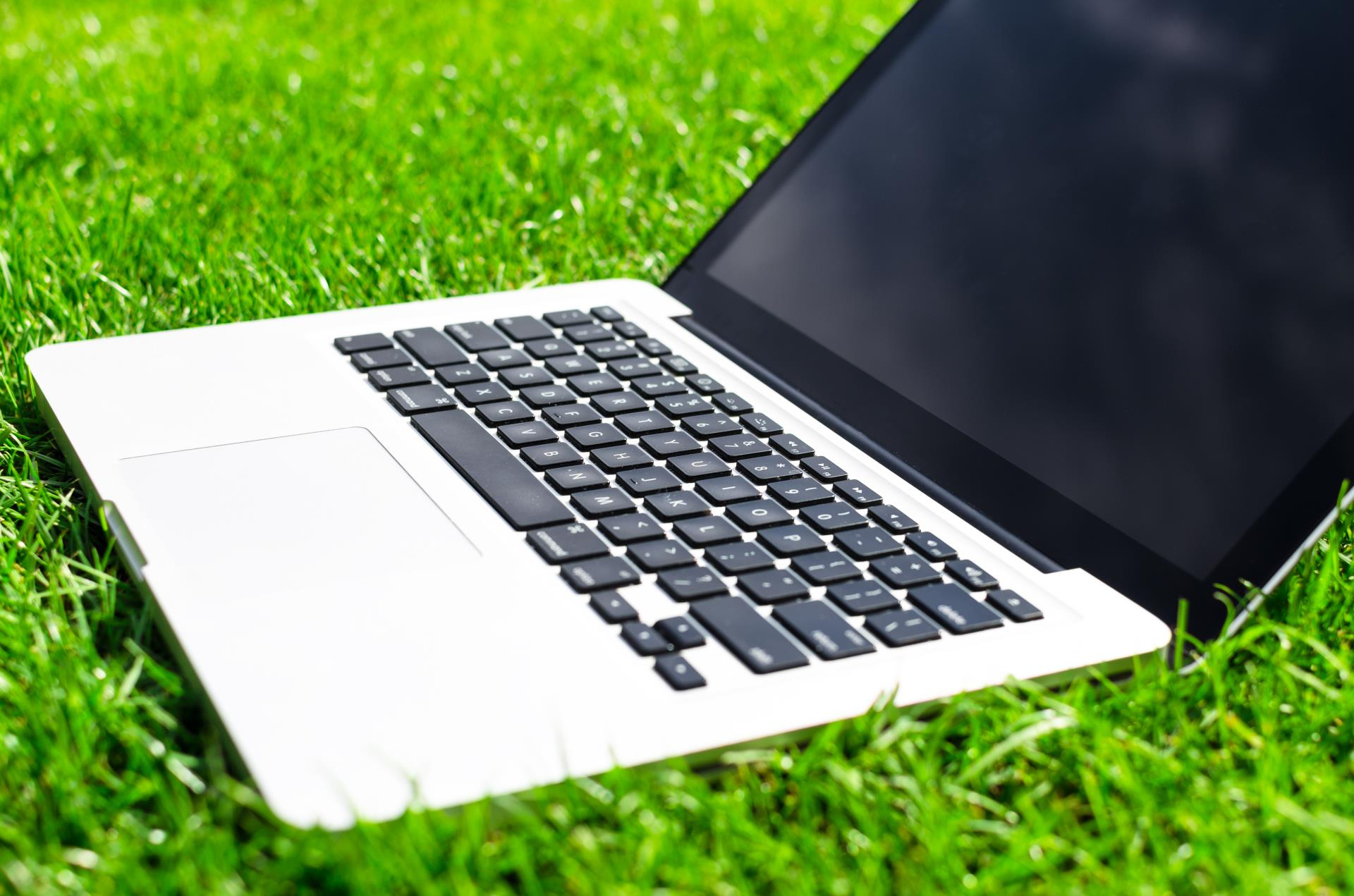 Working with Laptop on Freshly Cut Grass