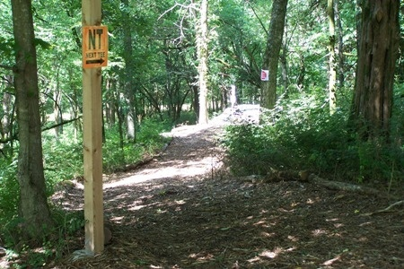 Disc Golf trail